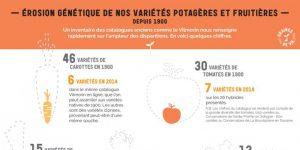 Érosion génétique de nos variétés potagères et fruitières
